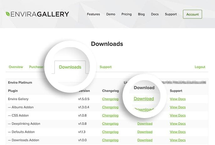 After logging into your Envira Gallery account you can download the main Envira Gallery plugin in the Downloads tab.