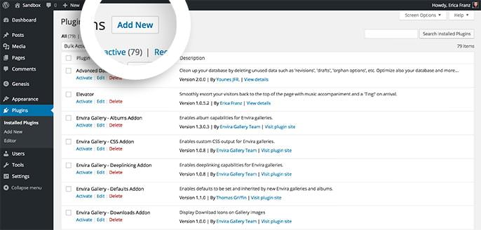 Select the Add New button from the Plugins screen to get started.