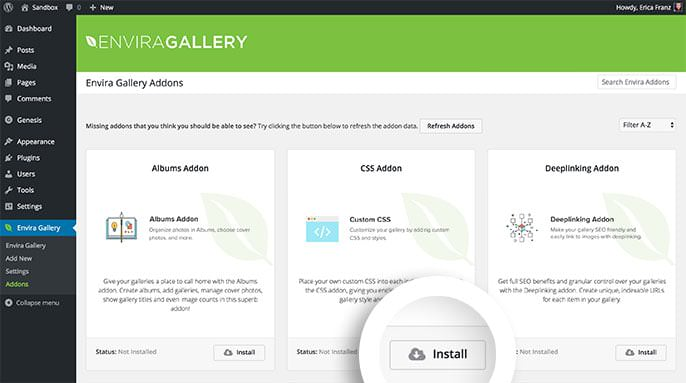 Select the Install button to install any available Addon for Envira Gallery.