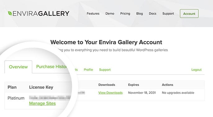From your Envira Gallery account screen you can copy your license key.