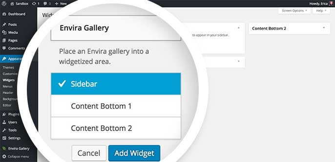 Select the Envira Gallery widget to choose which widgetized section of your site to add it to.
