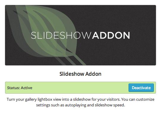 Envira — Slideshow Addon