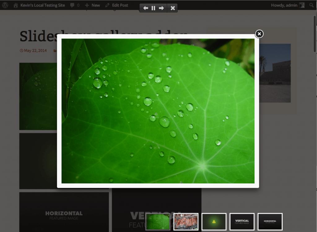 Envira – Slideshow Example