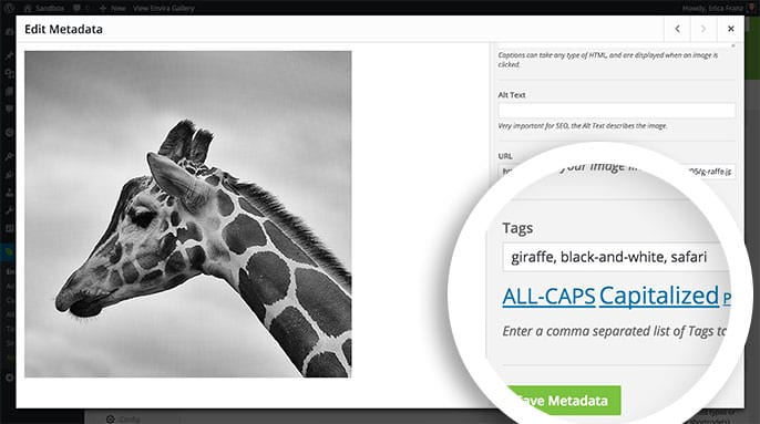 Add tags to individual images in your gallery through the Edit Metadata lightbox.