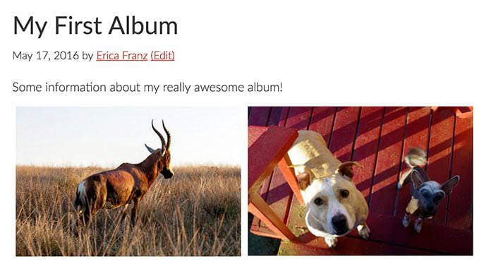 View your album's standalone URL to view how you've configured it to appear.