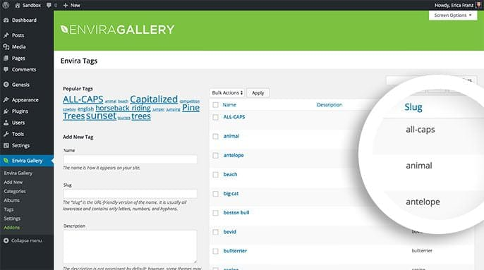 When creating a tag populated dynamic gallery be sure to use the tag slug and not the tag name.