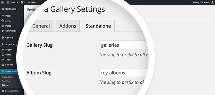 You can set the slugs for your Standalone Galleries and Albums in the Envira Gallery » Settings screen.