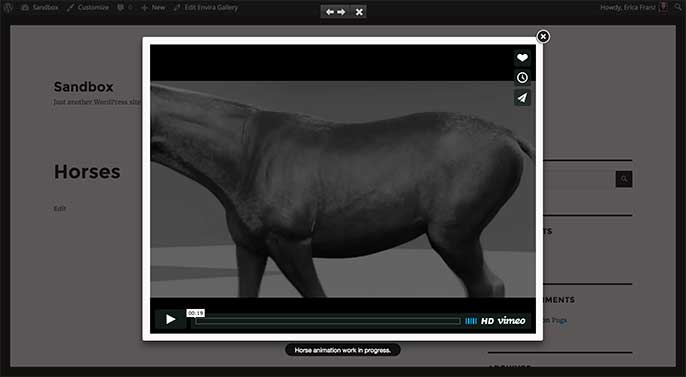 Videos will play in lightbox view when visiting the gallery you've added videos to.