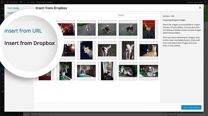 Select the Insert from Dropbox option to begin adding images from your Dropbox account.