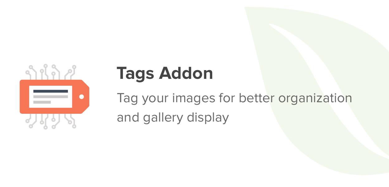 Tags Addon
