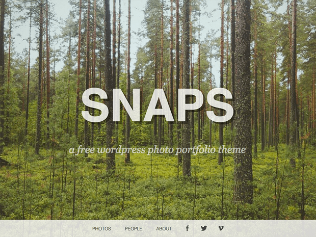 free word press photography themes