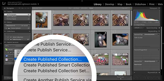 Right click on the Envira service and choose Create Published Collection to begin.