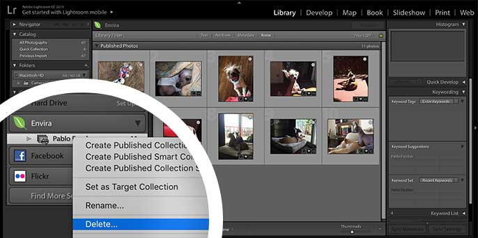 Select the Delete option after right clicking on the Collection name to remove the Collection in Lightroom.