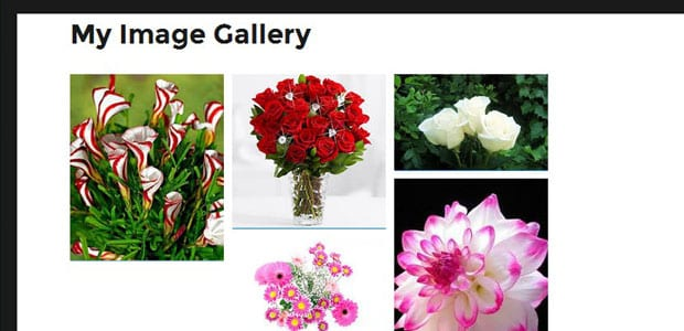 Image Gallery Appears At Website