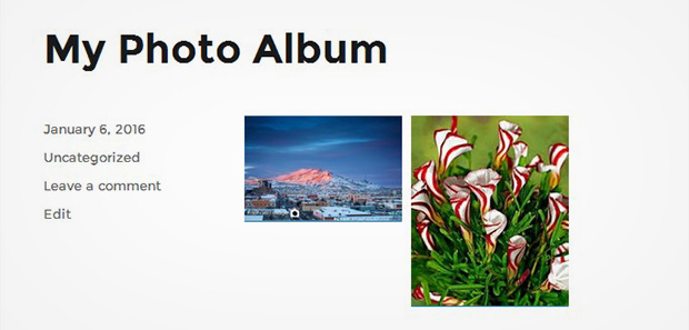 Photo Album In WordPress