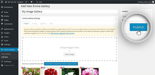 Publish Gallery