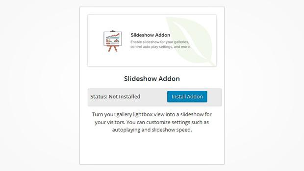 Slideshow Addon