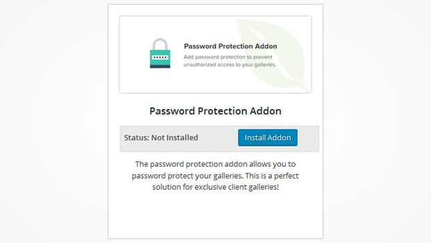 Password Protection Addon