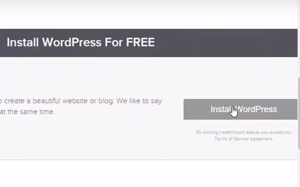 Click Install WordPress