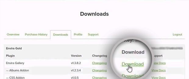 Download Envira Gallery Pro