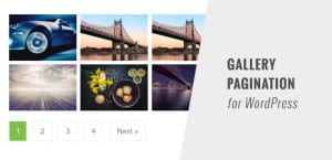 Gallery Pagination Thumbnail