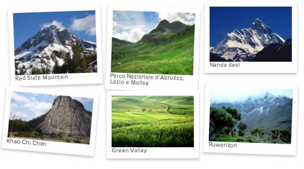 Polaroid Gallery Example