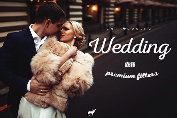 Wedding Premium Filters