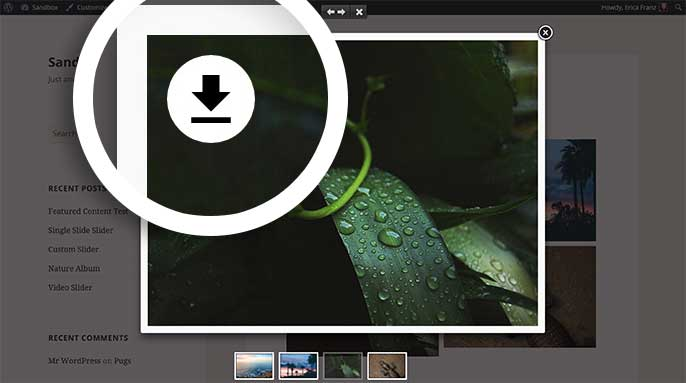 You can enable the Download Button in lightbox view for your galleries too.