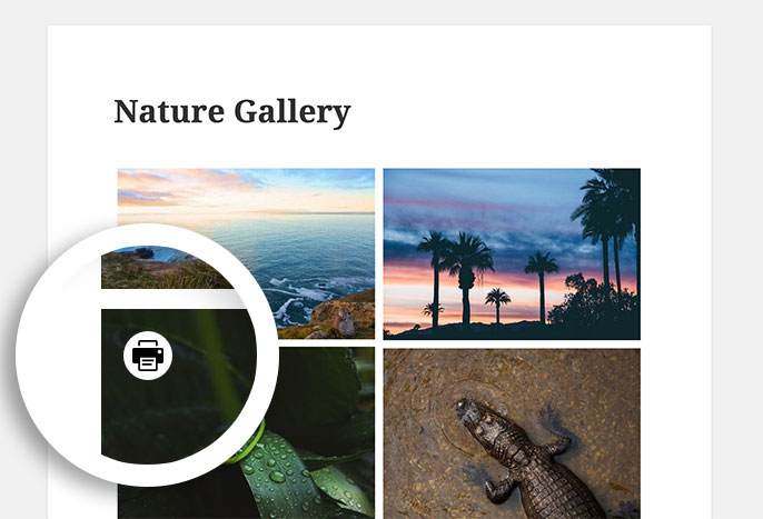 Once enabled, the print button will appear in the gallery view when hovering over an image.