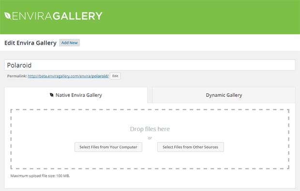 Native vs Dynamic Gallery
