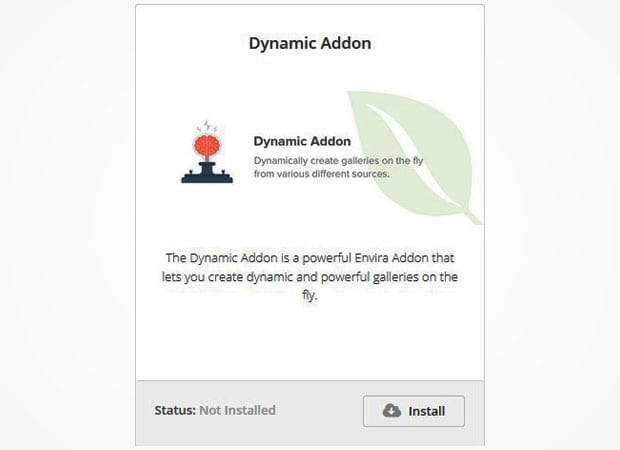 Dynamic Addon