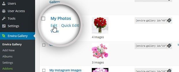 Edit Image Gallery