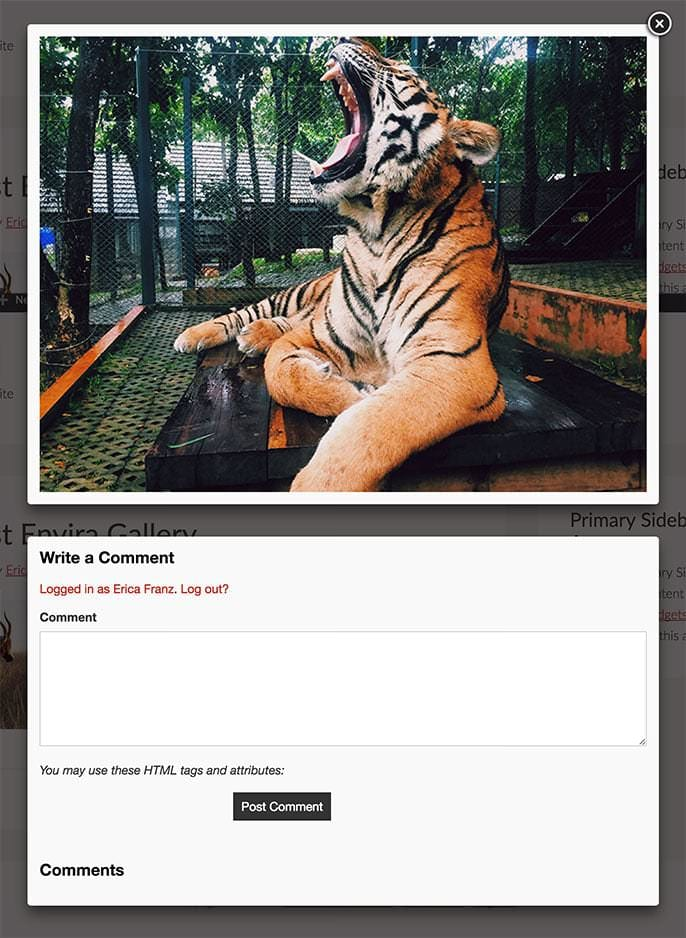 If you've enabled comments for the lightbox view you'll see both comments and the comment form in lightbox view.