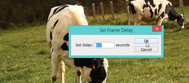 Set Frame Delay