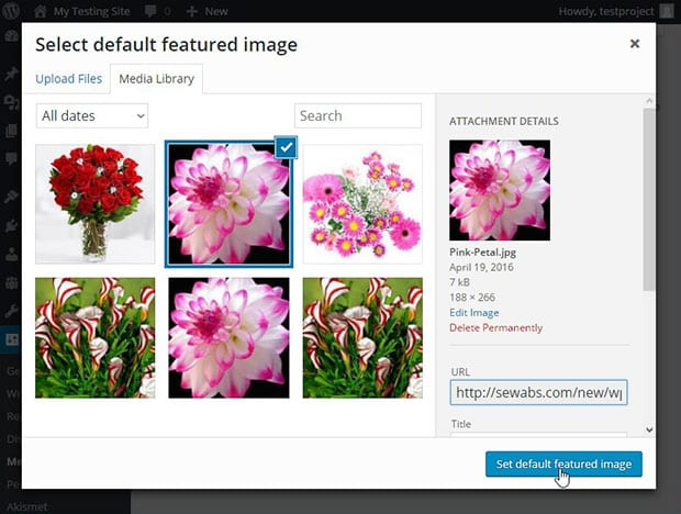 Set a Default Featured Image