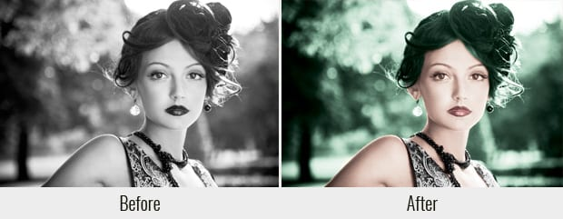Colorize a Black and White Photo