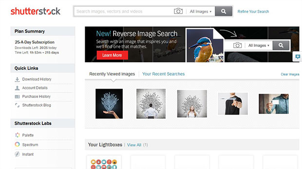 Where to Find Royalty Free Images for Your Blog Posts