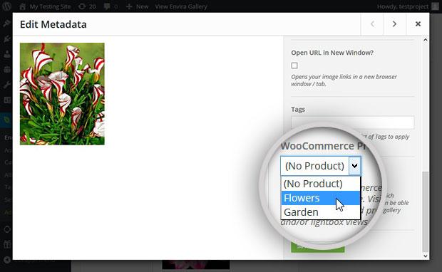 Select WooCommerce Product