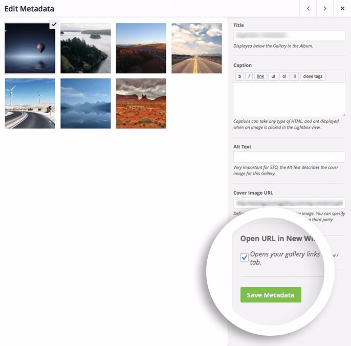 open in new window save metadata