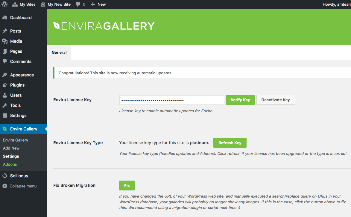 verify-license-key-enviragallery-plugin-for-your-multisite-network-install