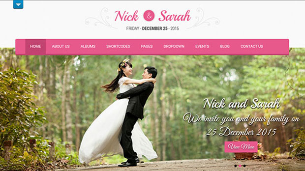 Professional Wedding Als For Photographers Ideas