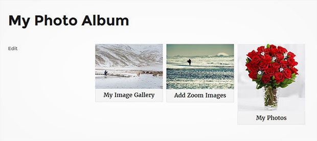 Captions to Photo Albums in WordPress