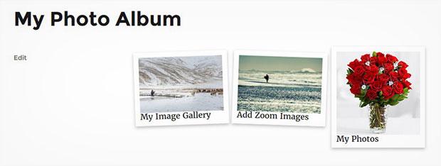 Polaroid Image Album