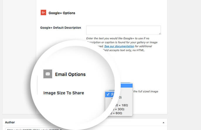 email sharing options