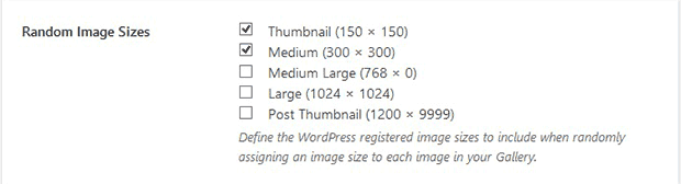 Multiple Image Sizes