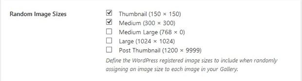 Multiple Image Sizes
