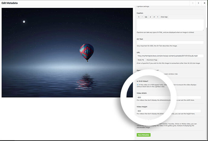 You can configure special metadata options for individual videos in your gallery.