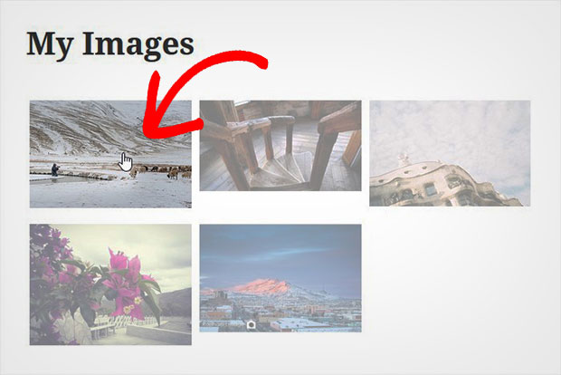 Add Image Hover Effects