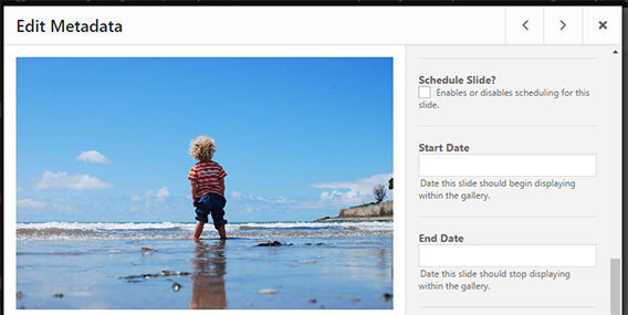 schedule individual image in wordpress gallery