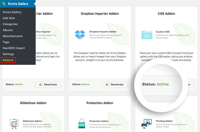 Install and activate the CSS addon